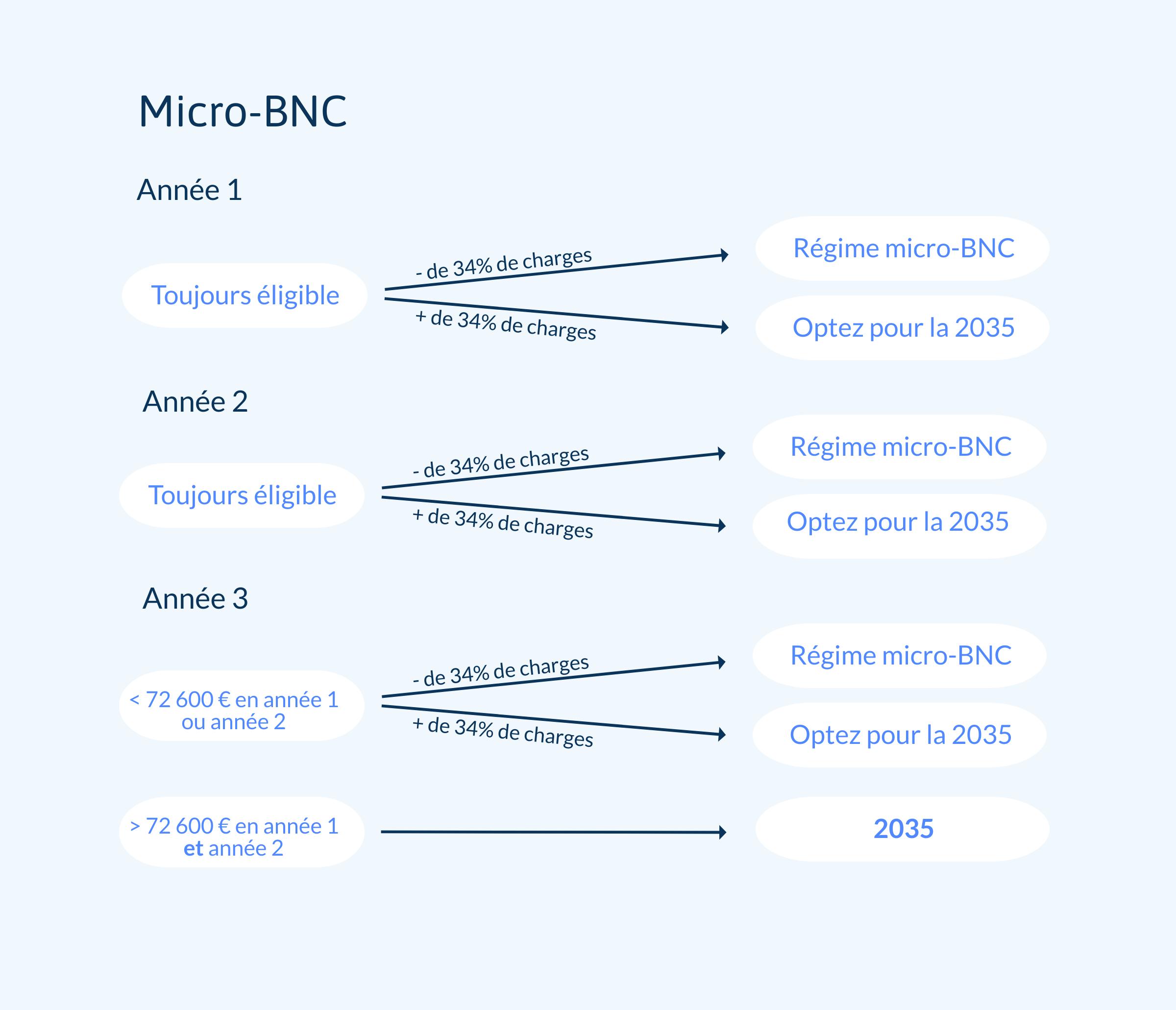 Graphique sur le choix entre micro-BNC et régime réel