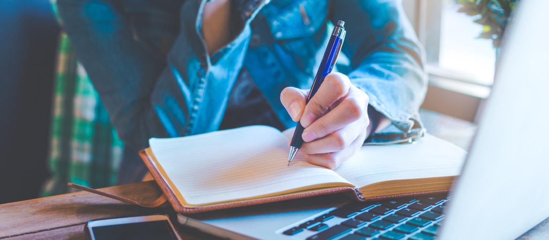 Le Livre-Journal des professionnels en BNC